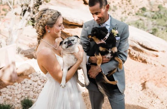 best friends animal society wedding