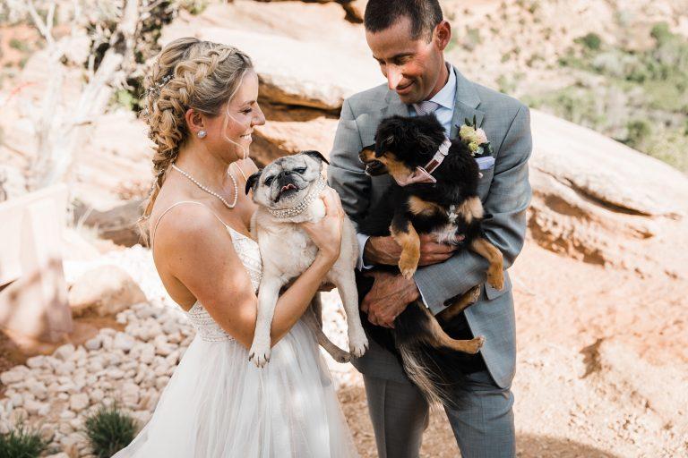 best friends animal society wedding